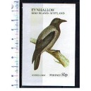 EYNHALLOW 1973-113F Uccello Hooded Crow  1 BF ** completi