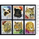 CUBA 1977-3745 Various felines - 6 stamps used cpl