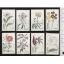 EYNHALLOW 1973-114 Flowers  8 stamps ** complete