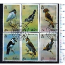 BELIZE 1981-448 - Uccelli - 6 val. serie completa usata